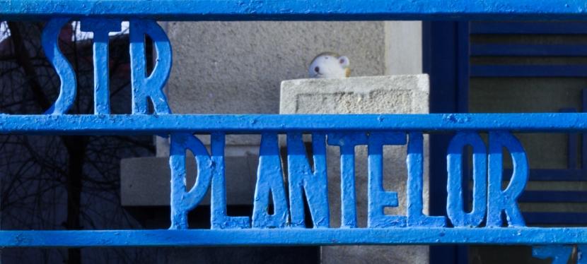 Tour: Plantelor area